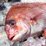 結婚式場で使われる魚